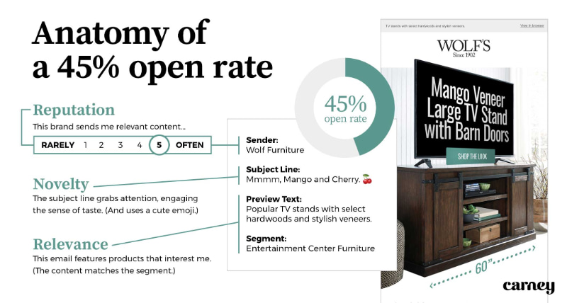 Anatomy of a 45% open rate: Reputation, Novelty, and Relevance over time produced a 45% open rate on a retail email campaign for Wolf's.